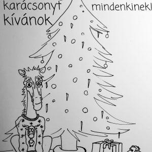 Fakó karácsony - Szép Noémi rajza